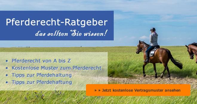 Aktuelle Ratgeber / kostenlose Rechtsfragen zum Pferderecht