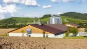 Landwirte erweitern ihre Betriebe auch bei hoher bestehender Geruchsbelästigung