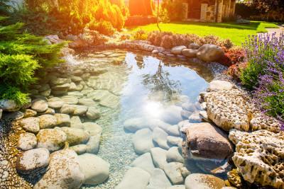 Schwimmbecken Statt Bio Teich Auf Gartengelände Unzulässig Recht