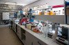 Labor ist kein häusliches Arbeitszimmer