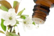 Pflanzenheilkundliche Behandlung als außergewöhnliche Belastung absetzbar