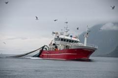 Fischkutter beim Fischen (© Bruno Barracuda - Fotolia.com)