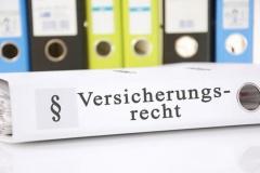 Rechtsanwalt für Versicherungsrecht in Offenburg (© Marco2811 - Fotolia.com)