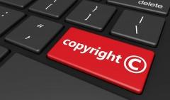 Copyrightgeschützte Software (© Niroworld - Fotolia.com)